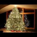 ¿Has puesto ya el árbol de Navidad?