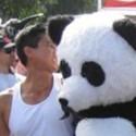 La venganza de la panda