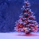 El árbol de la «feliz» navidad