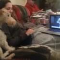 Mi perro puede skypear