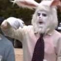 En honor al conejo de pascua