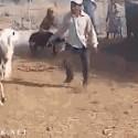 Una cabra con mala leche