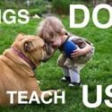 A ver si aprendemos