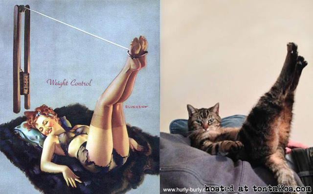 Pin up gatuno - tontaKos.com(14)